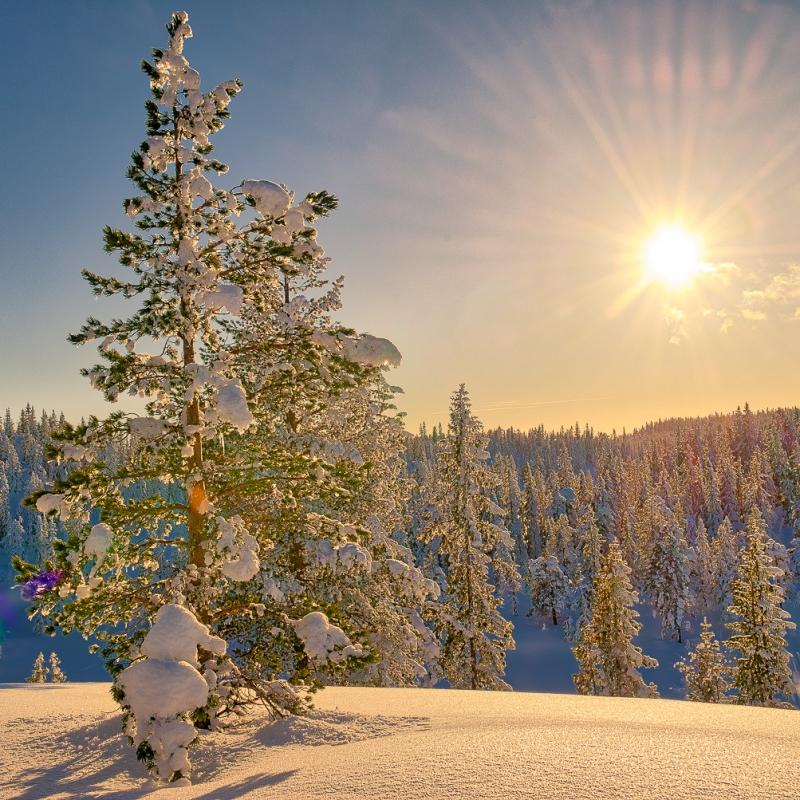 Motlys en vinterdag på Skrim